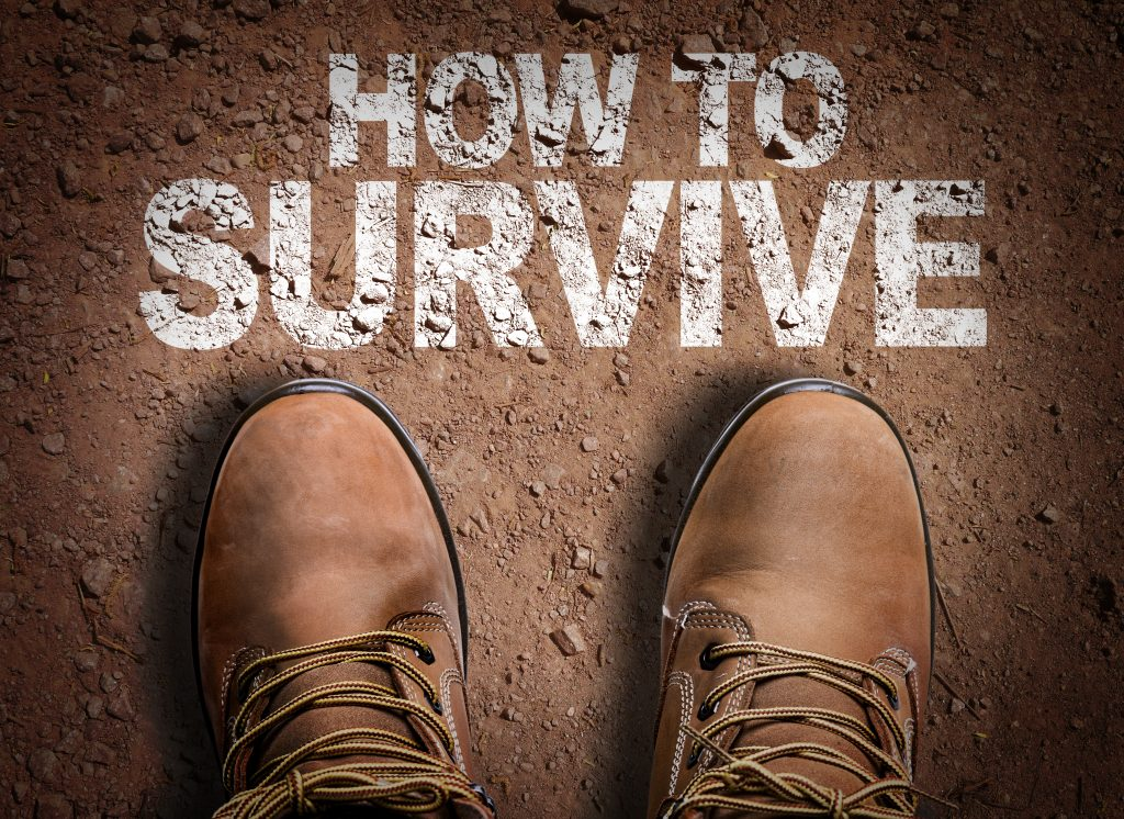 Escape Room Survival Guide